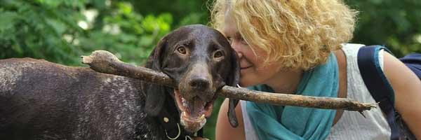 3 Tarkeaa Kysymysta Joihin Vastata Ennen Koiran Hankintaa 3 - 3 Tärkeää Kysymystä, Joihin Vastata Ennen Koiran Hankintaa