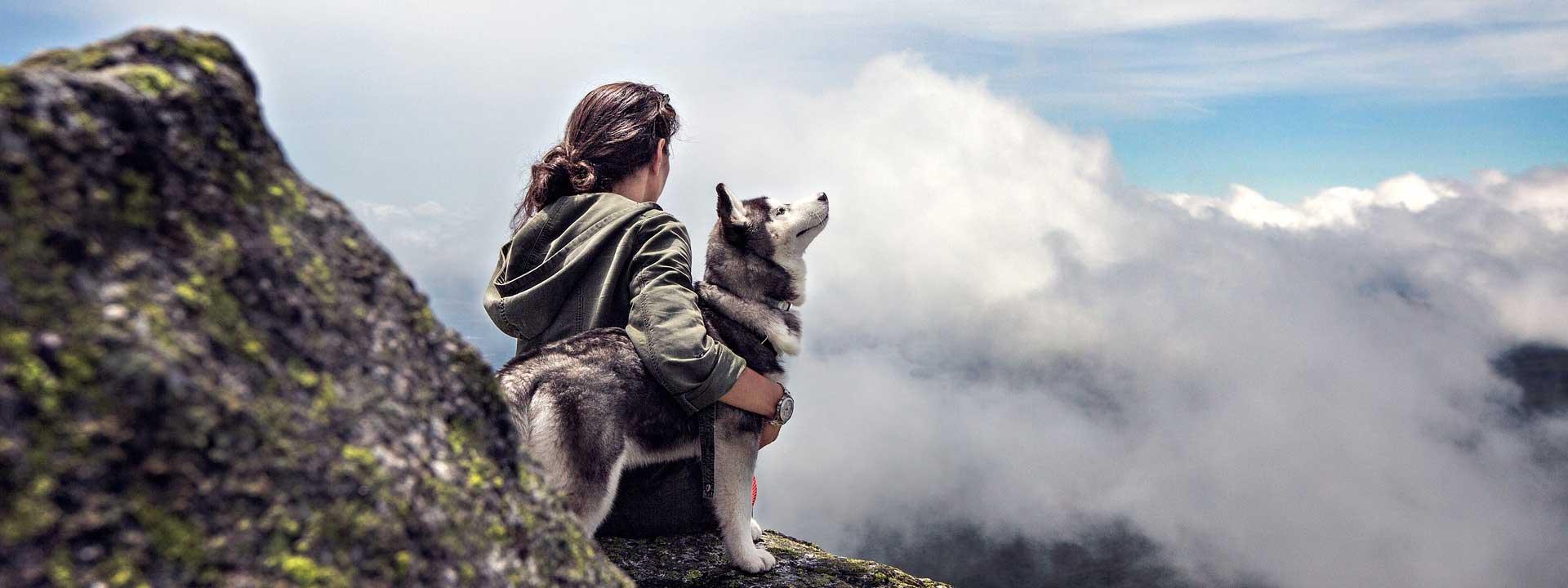 Kennel-Serica's-–-Suomen-Koiraystävät