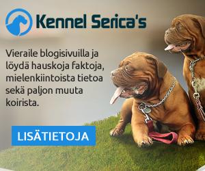 Koiran-Ystävien-Blogi